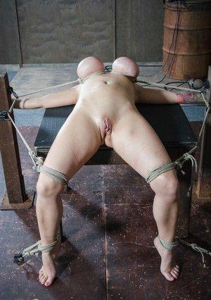 Free Huge Tits in BDSM Porn