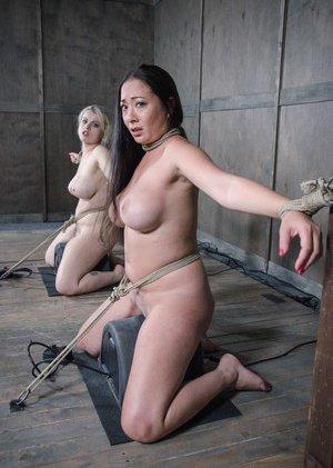 Free Sybian Porn